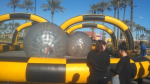 Zorb Ball Rat Race